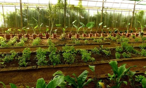 construction de systèmes d'irrigation
